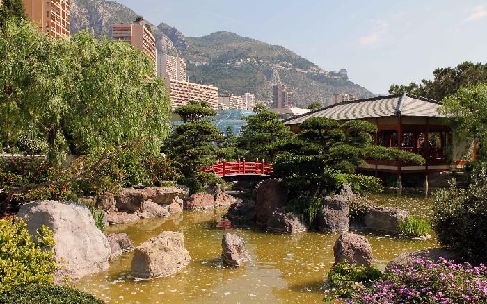 Les diff rents types de bassin jardin - Bassin de jardin quelle taille ...
