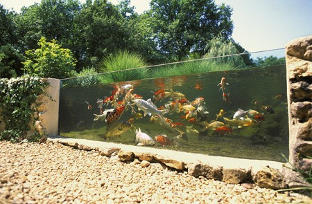 Les pompes pour bassin de jardin for Construction bassin aquatique