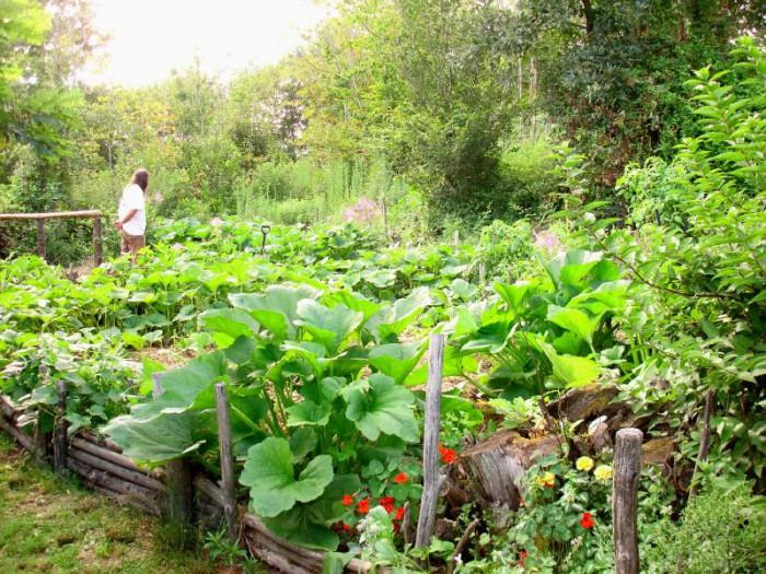 La permaculture au jardin permet d\'être autosuffisant toute l\'année